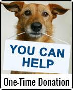 Canfix Donations