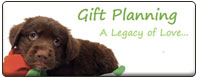 Gift Planning: A Legacy of Love...